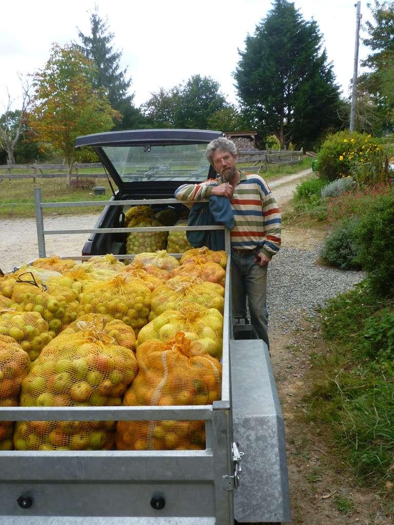 Yvon emmène les sacs de pommes