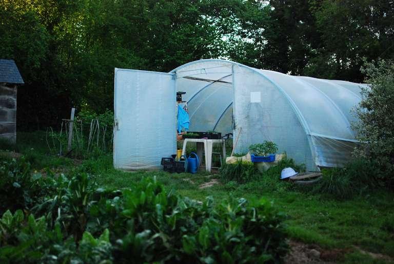 The small plastic greenhouse